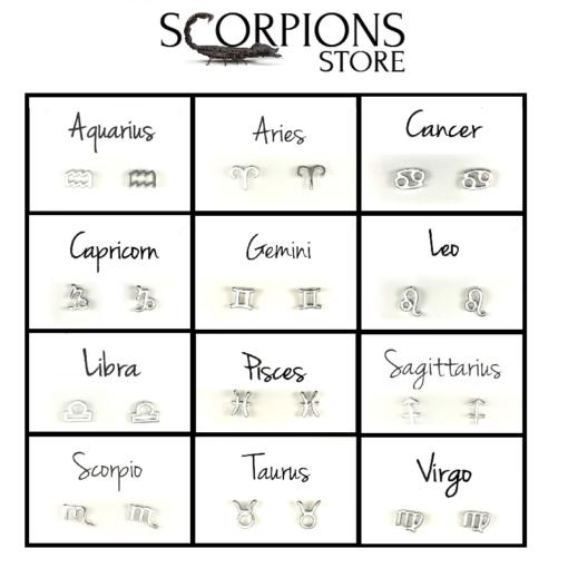 Astro Scorpio Earrings 12 signs-