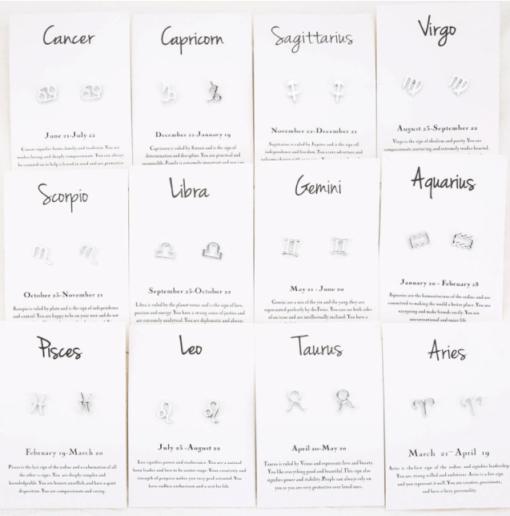 Astro Scorpio Earrings 12 signs