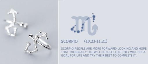 Scorpio Constellation Earrings Astrologie