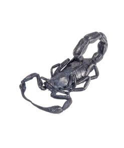 Scorpion Pendant Silver Scorpions Store_