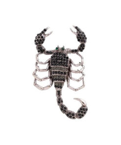 Brooch Scorpion