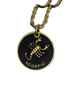 Scorpio Sign Necklace Stainless Steel Zodiac_