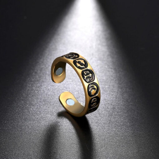 Scorpio Zodiac Sign Ring Scorpions Store